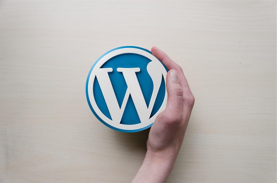 Zašto je WordPress idealno rješenje za vaše poduzeće?